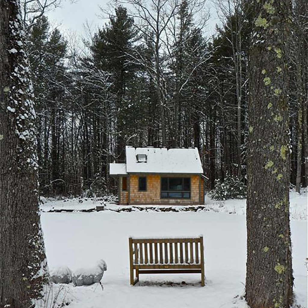Snow on pond, studio