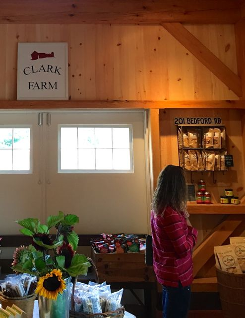 Clark farm stand with shopper in MA