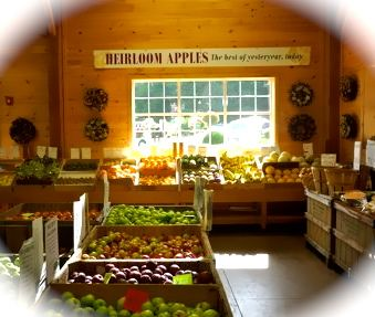 Heirloom Apples Volante Farms