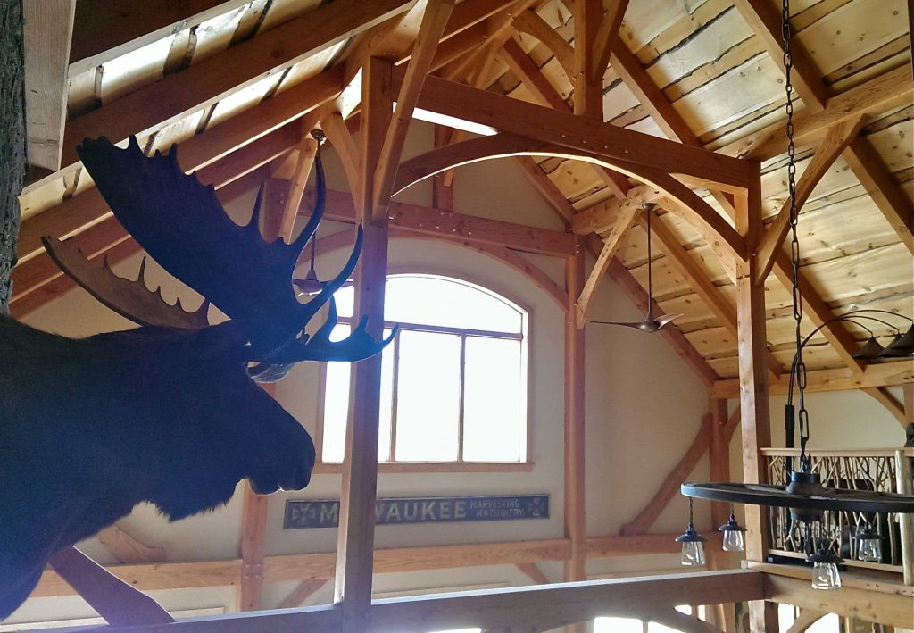 moose profile, in Massachusetts timber frame